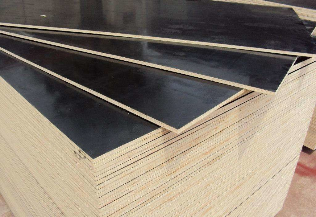 Water Boiled Proof Black Film Faced Plywood For Office Building Projects 2440x1220mm